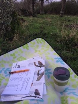BIG FARMLAND BIRD COUNT... THE RESULTS ARE IN!